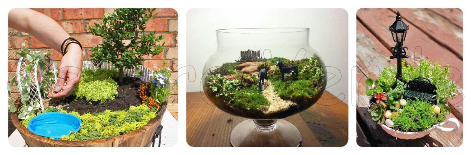 Giardino in miniatura un angolo di verde sempre con te - Giardino in miniatura ...